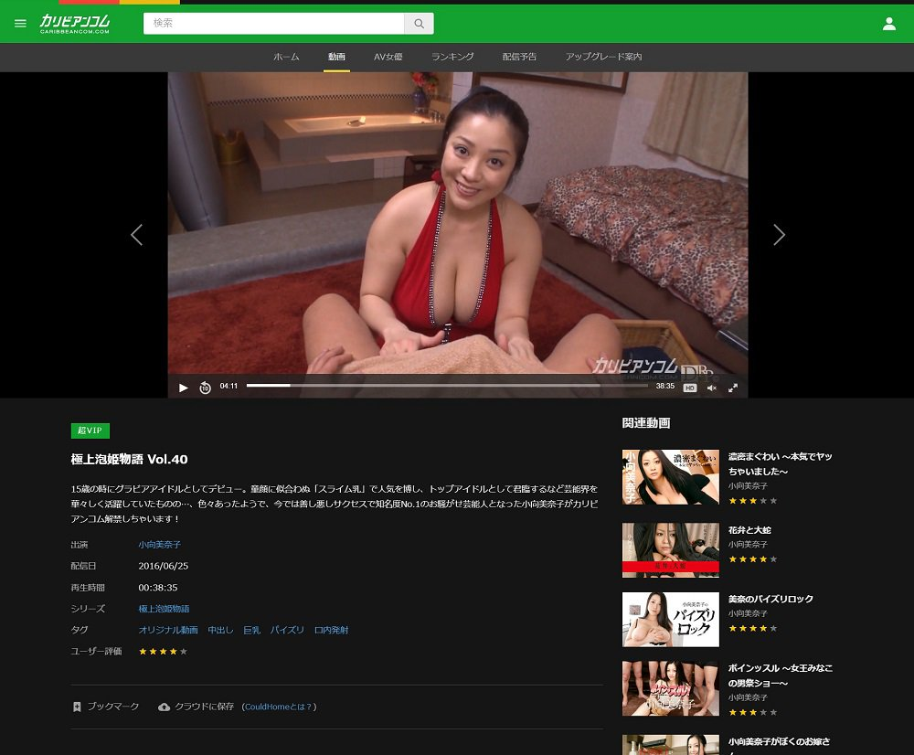 小向美奈子 カリビアンコム PC